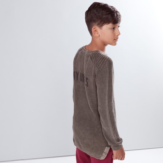 Textured Round Neck Raglan Sleeves Sweater