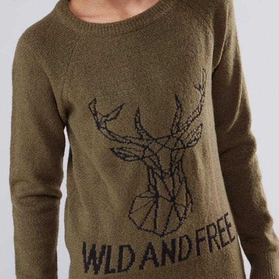 Textured Raglan Sleeves Sweater
