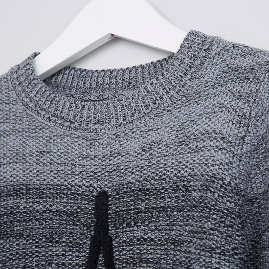 Textured Round Neck Long Sleeves Sweater