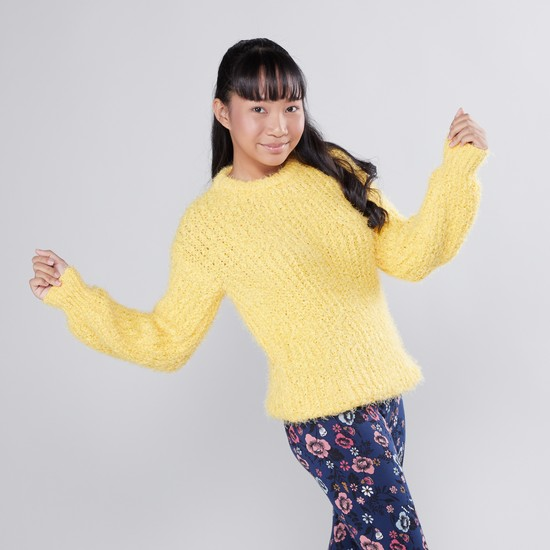 Fluffy Sweater with Round Neck and Long Sleeves
