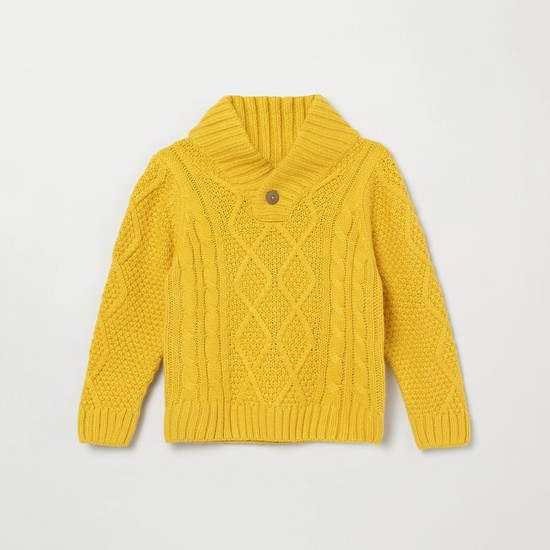 MAX Cable Knit Buttoned Shawl Collar Sweater