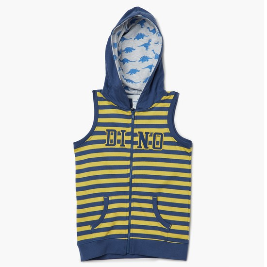 MAX Dino Striped Hooded Jacket