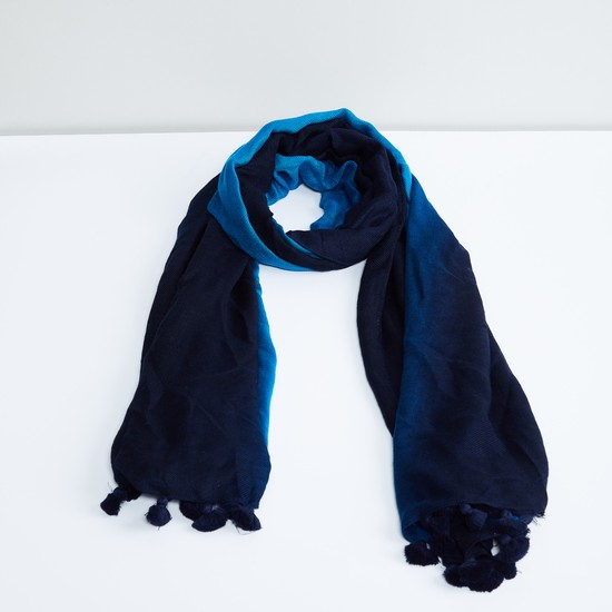 MAX Ombre Tassel Trimmed Scarf