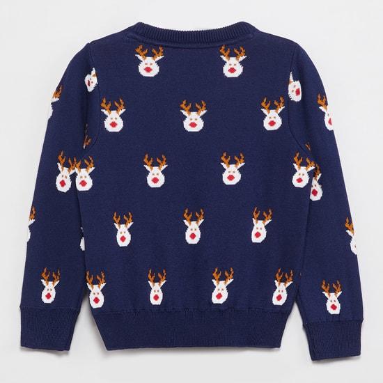 MAX Jacquard Knit Crew Neck Sweater