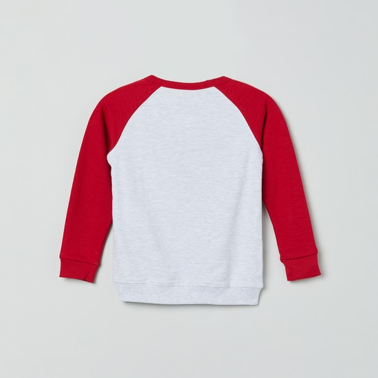 MAX Raglan Sleeves Sweatshirt with Applique