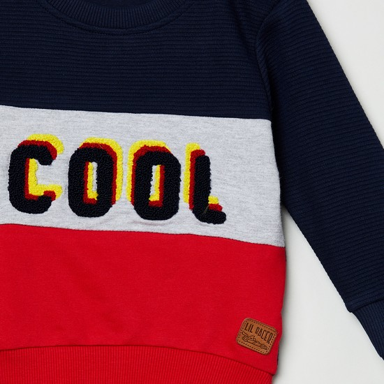 MAX Colourblocked Full Sleeves Sweatshirt with Applique