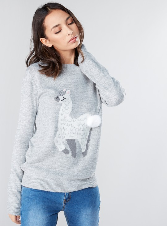 Textured Pom-Pom Detail Sweater with Round Neck and Long Sleeves