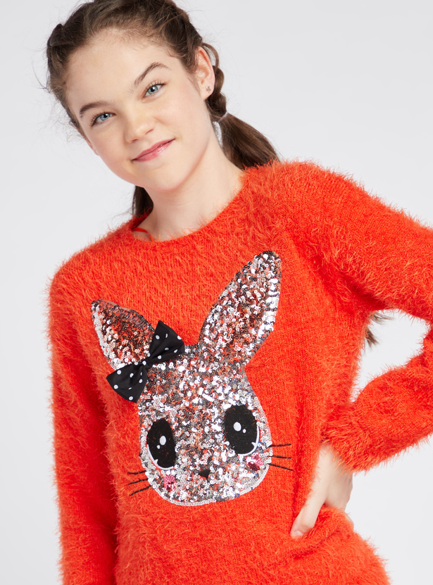 Sequin Embellished Round Neck Sweater with Long Sleeves