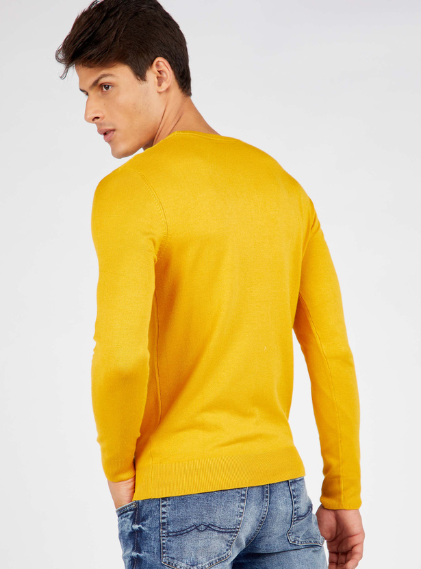 Solid Regular Fit Round Neck Sweater with Long Sleeves